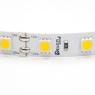 DSG560-12-NW-33